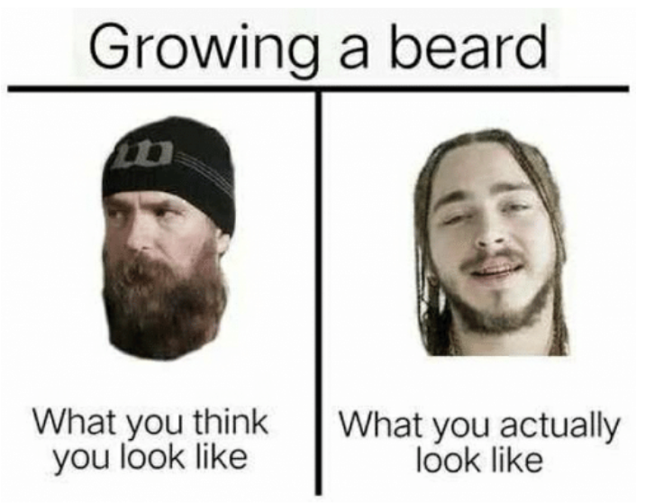 This image is of a T chart. The title is Growing a beard. The left section shows a man wearing a black beanie who has a thick, longish brown beard that looks awesome. Underneath are the words what you think you look like. The right section of the T chart has another man with thin dreadlock. He has a short beard that is little more than whisps under his chin, nose, and bottom lip. The text underneath this picture says what you actually look like