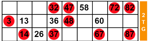 Two Lines Bingo Ticket