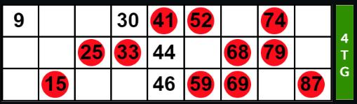 Full House Bingo Ticket