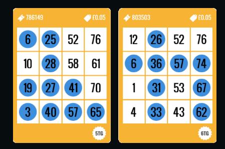 Foxy Bingo 80 ball ticket