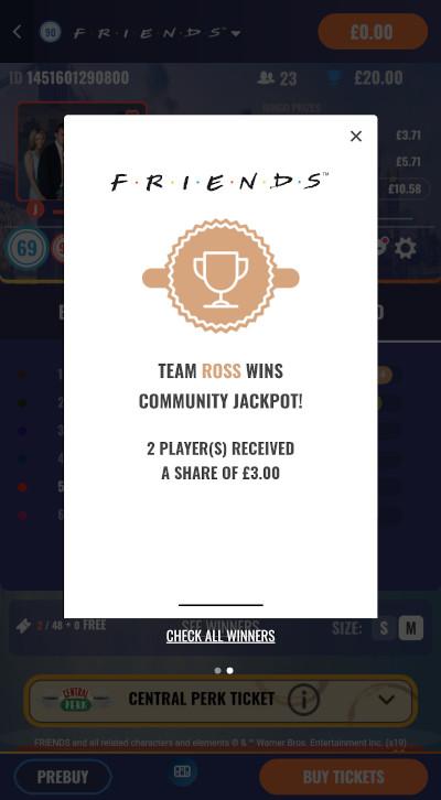 Friends Bingo Team Ross winner