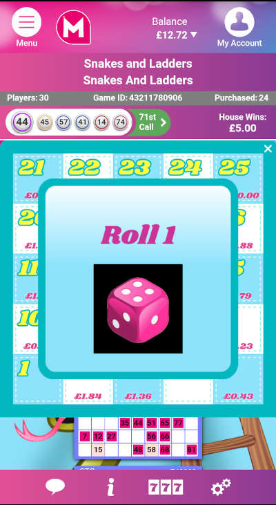 Snakes & Ladders Bingo Dice Roll