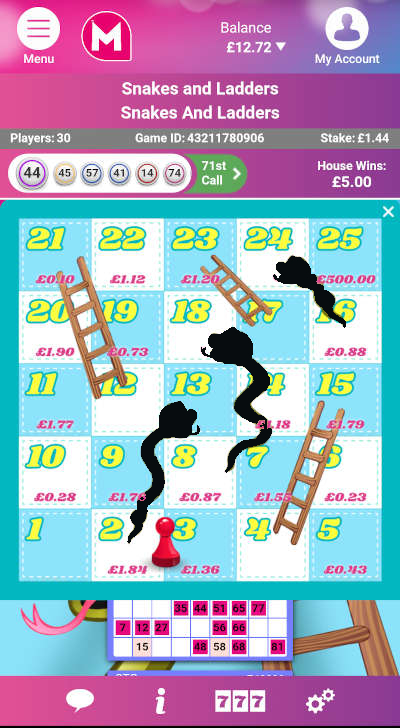 Snakes & Ladders Bingo Board