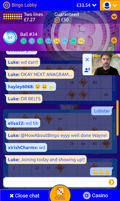 Bingocams chat game in play