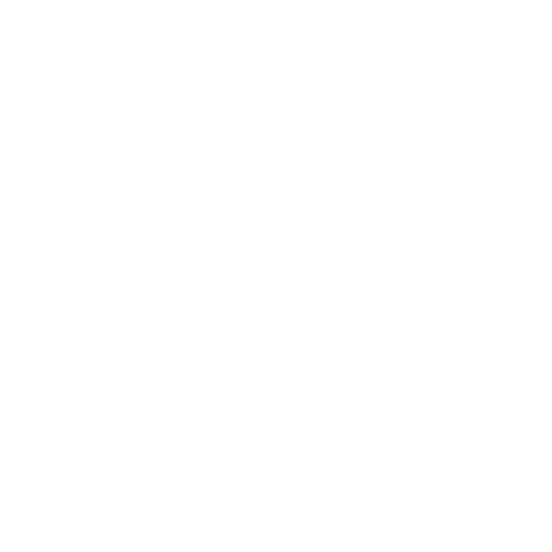 The Palaces Bingo