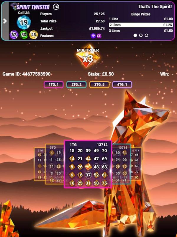 Spirit Twister Bingo game