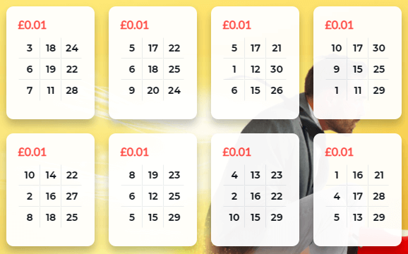 30 ball bingo tickets