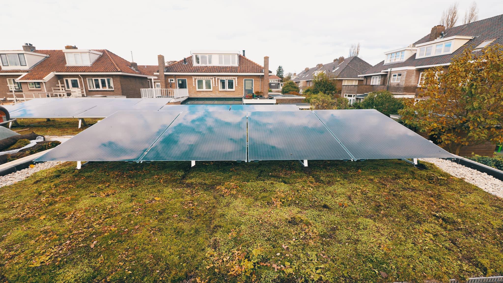 Solar Sedum in LEEF! Magazine