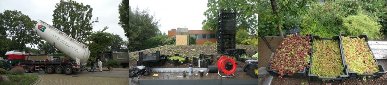 Collage van de installatie van het Solar Sedum Energiedak