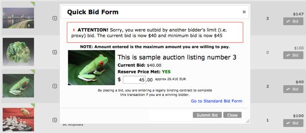 Quick Bid Form - Outbid Notice