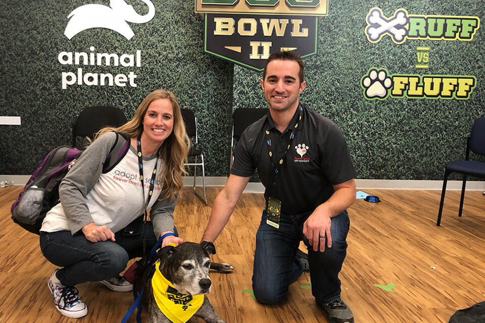 Forever Loved Pet Sanctuary will be represented in Animal Planet's PUPPY BOWL PRESENTS: DOG BOWL II