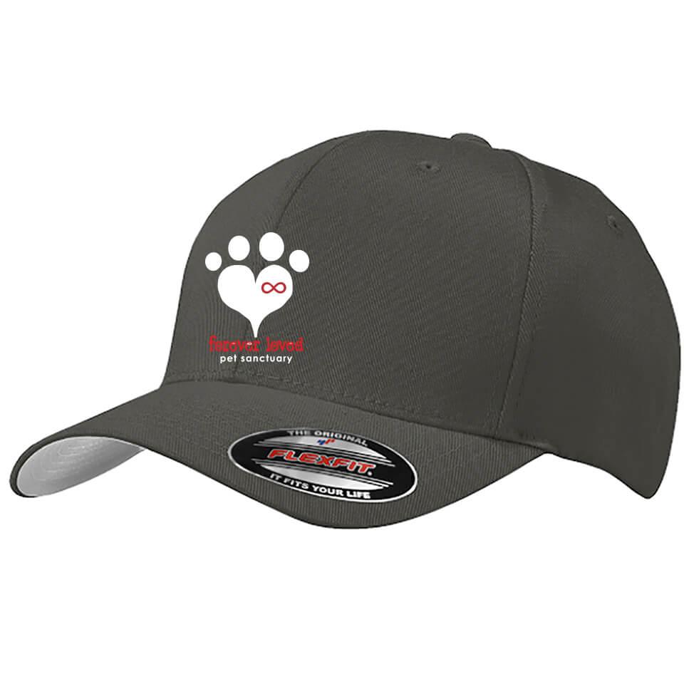 Flexfit hat #C865