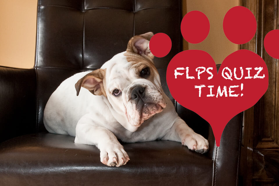 FLPS by the numbers quiz