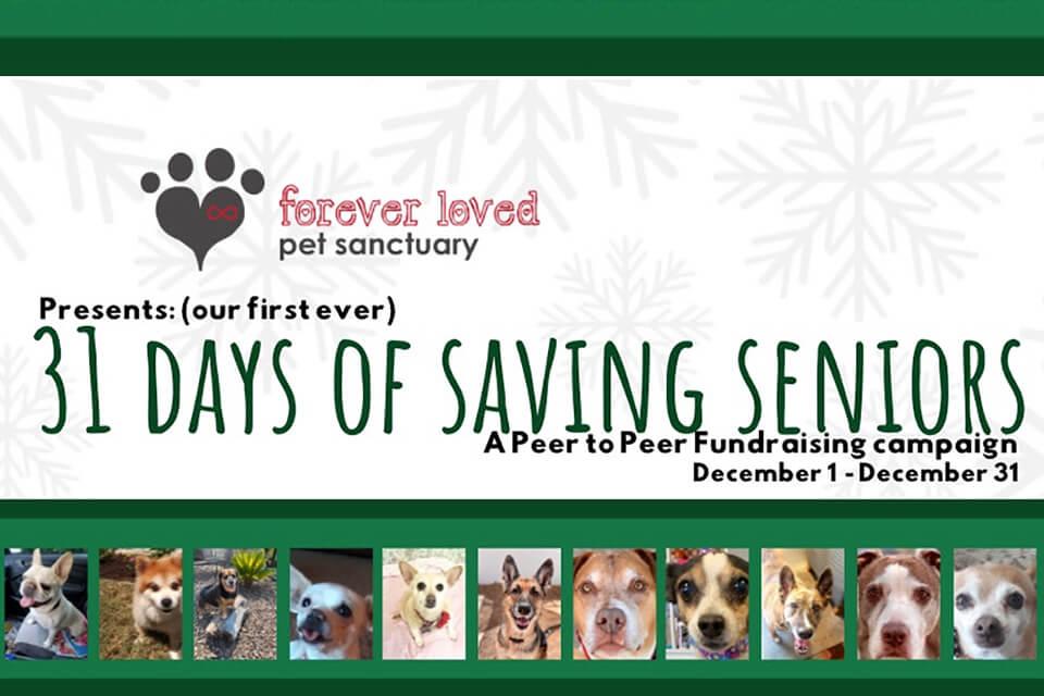 31 Days of Saving Seniors
