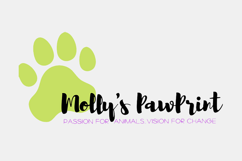 A new grant from Molly's PawPrint will help FLPS save more senior dogs