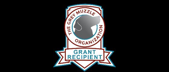 Grey Muzzle Organization