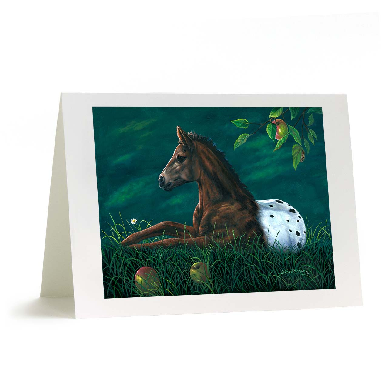 "Baby Colt Appleloosa Horse Greeting Card - ""Apple Lusa"""
