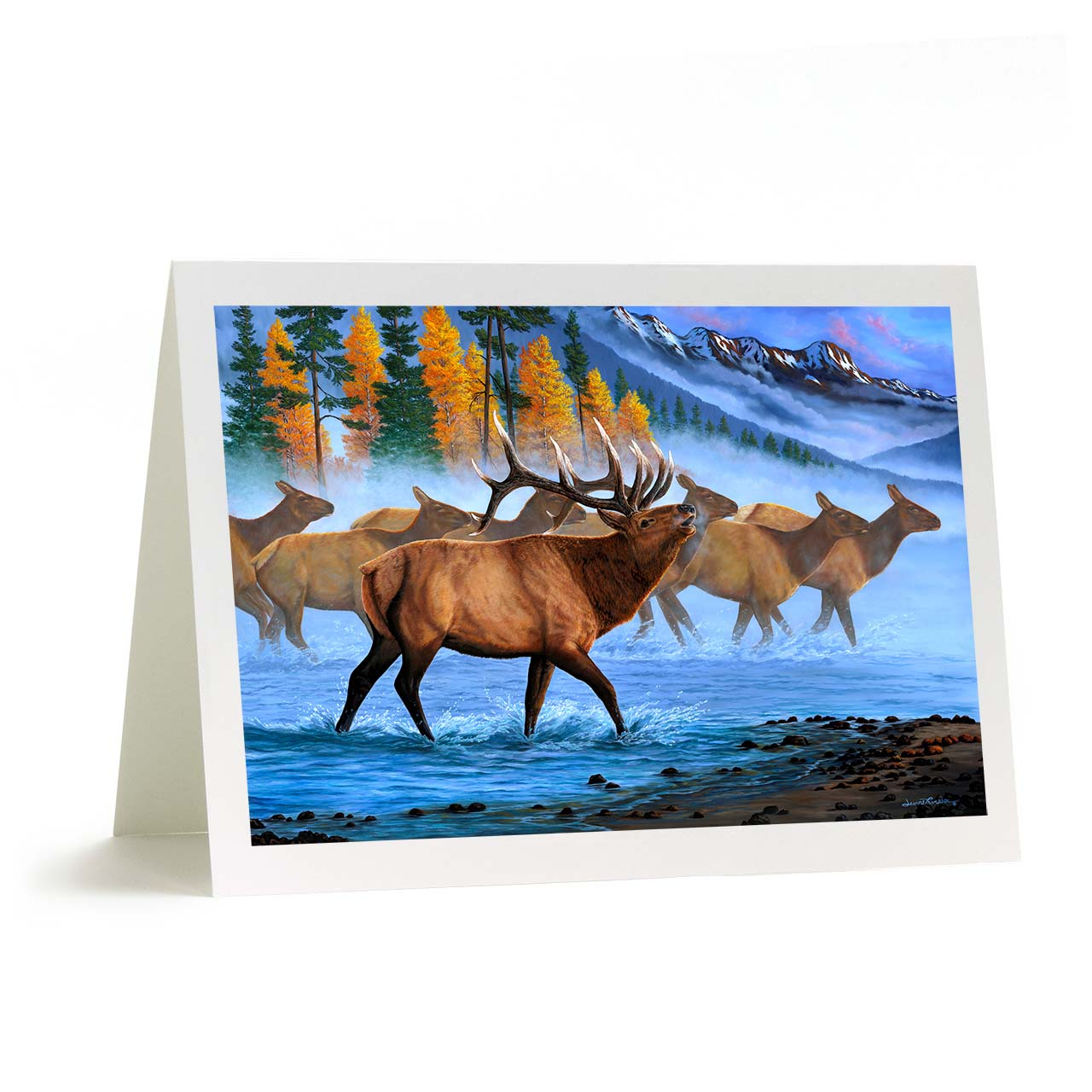 "Rocky Mountain Aspen Bull Elk Greeting Card - ""Aspen Elk"""