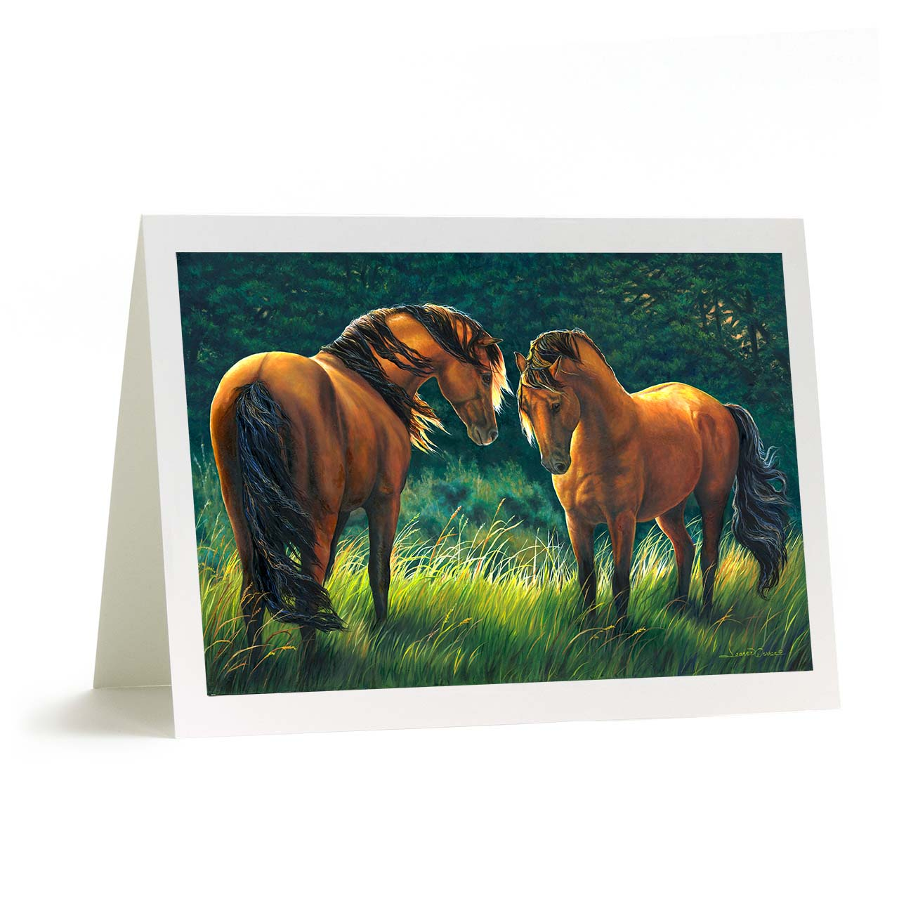"Friendly Kiger Mustang Horses in Meadow Greeting Card - ""At First Sight"""