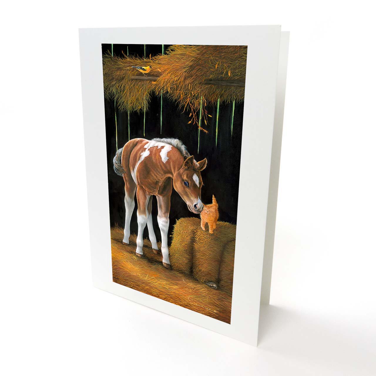 "Baby Horse Colt and Kitten in Hay Barn Greeting Card - ""Barn Buddies"""