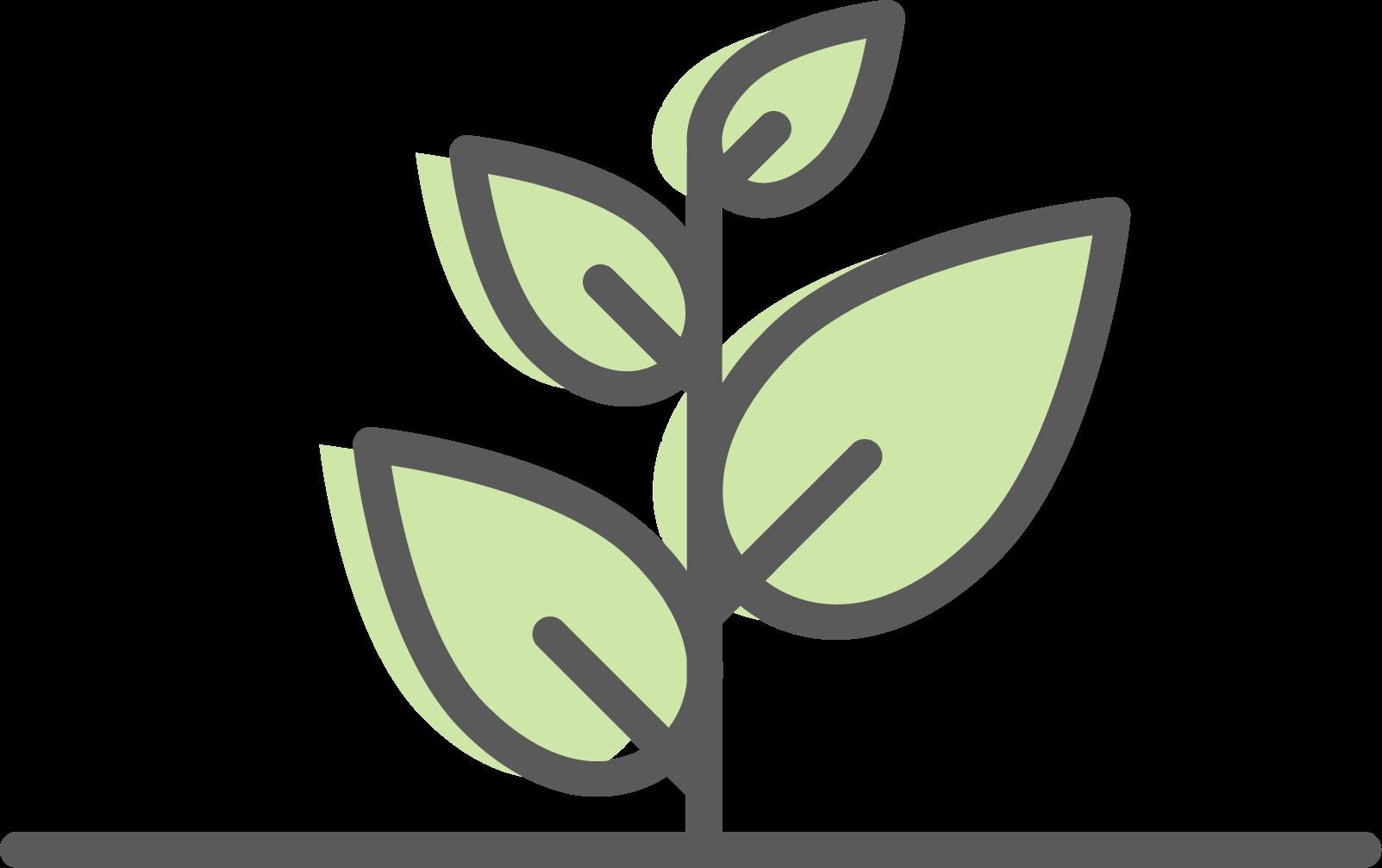 icon leaf growth