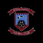 Stoke Gabriel FC Logo