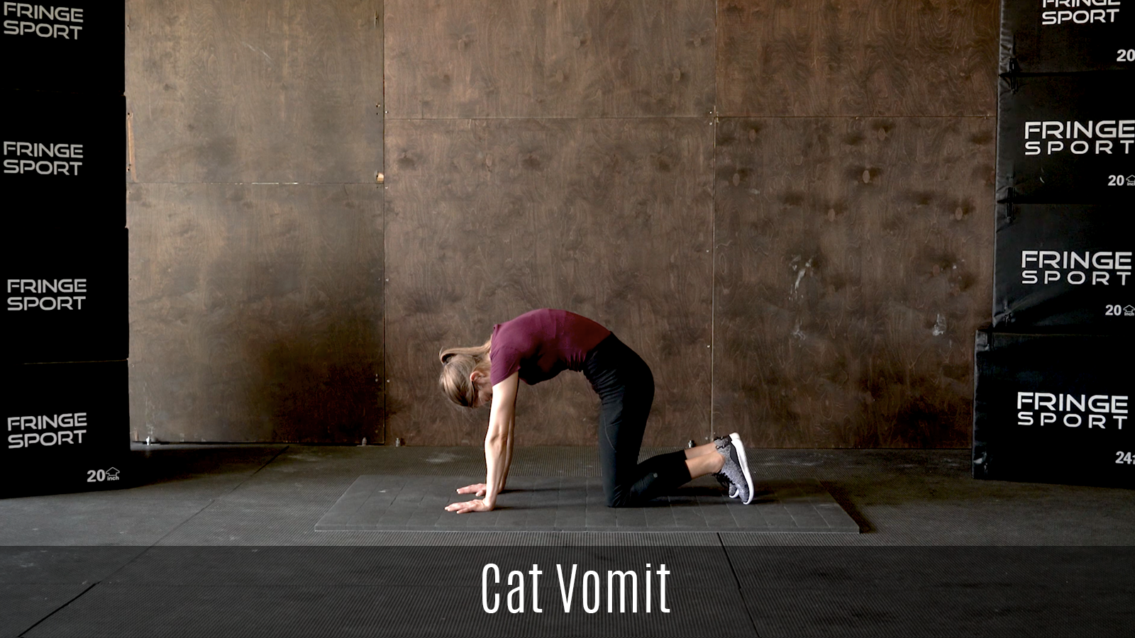 cat vomit stretch demo