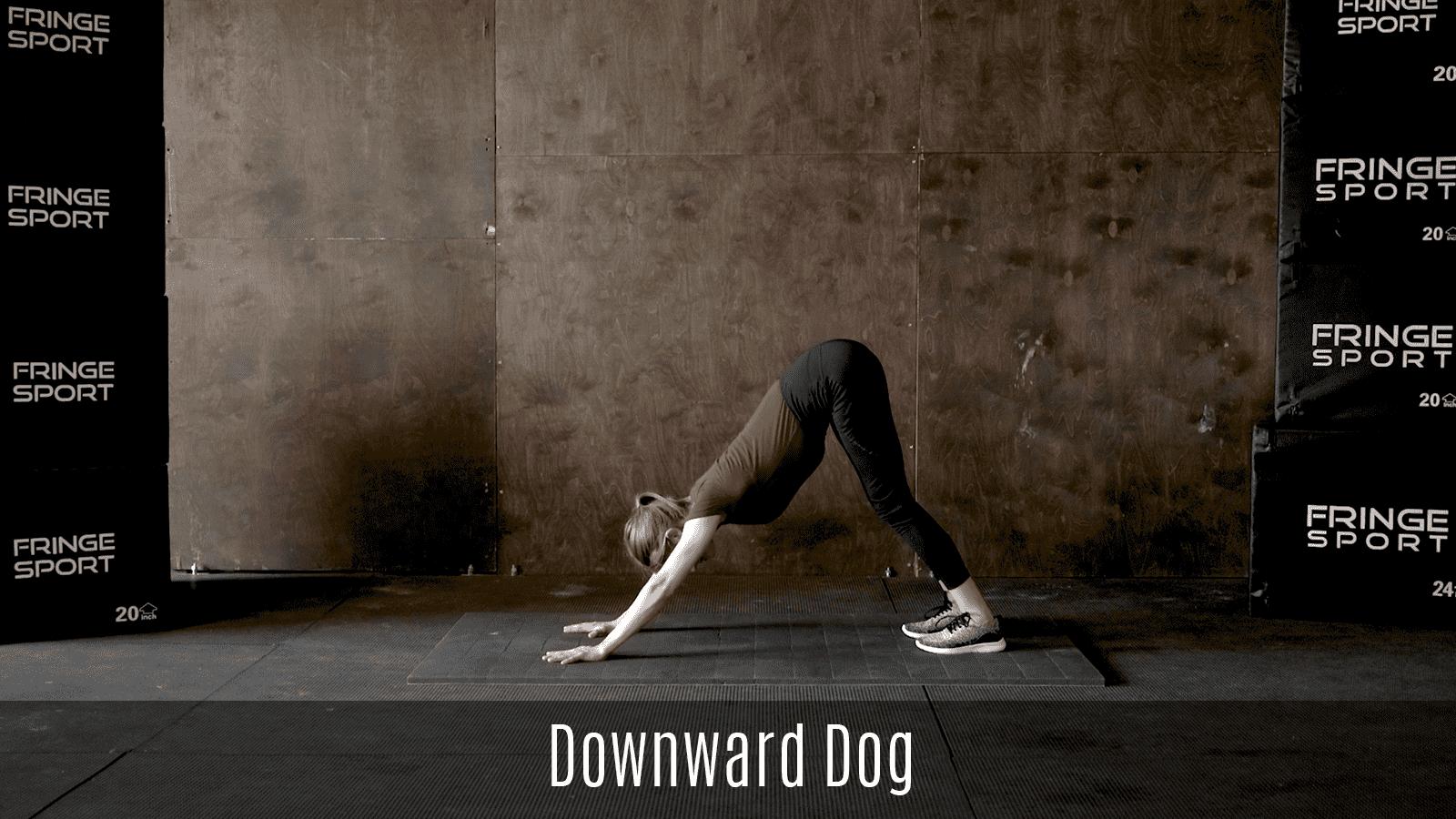 downward dog demo