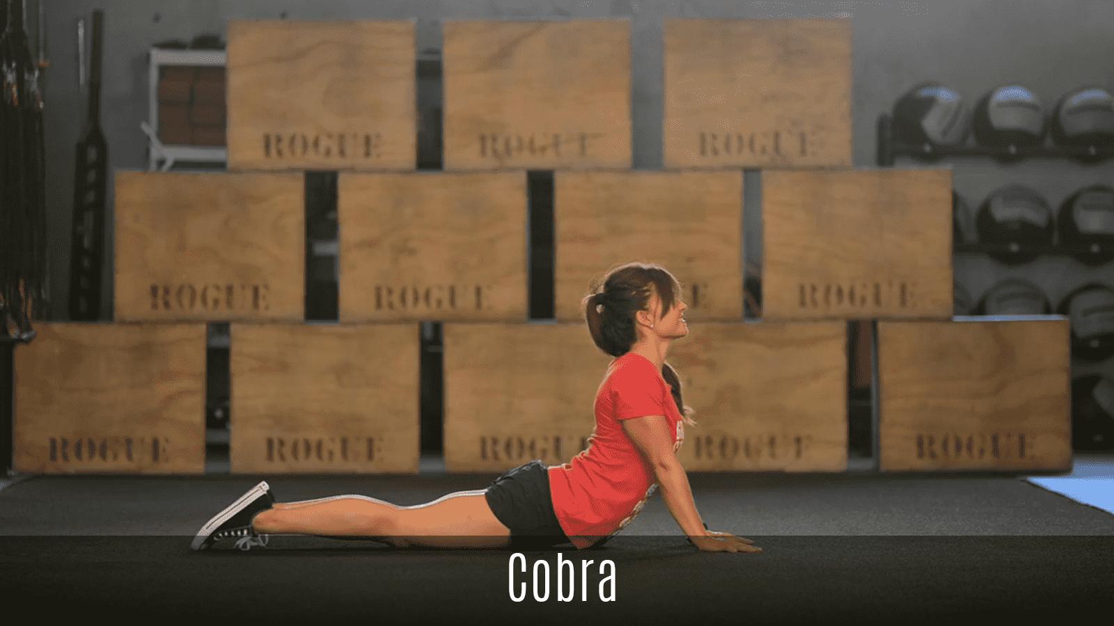 cobra stretch demo