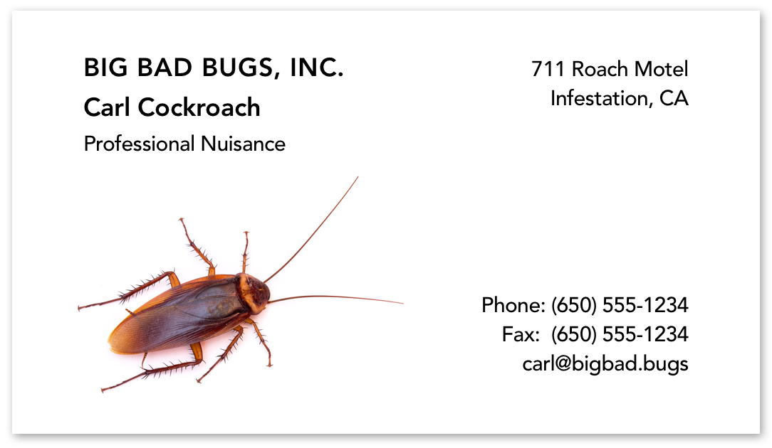Business card with a cockroach