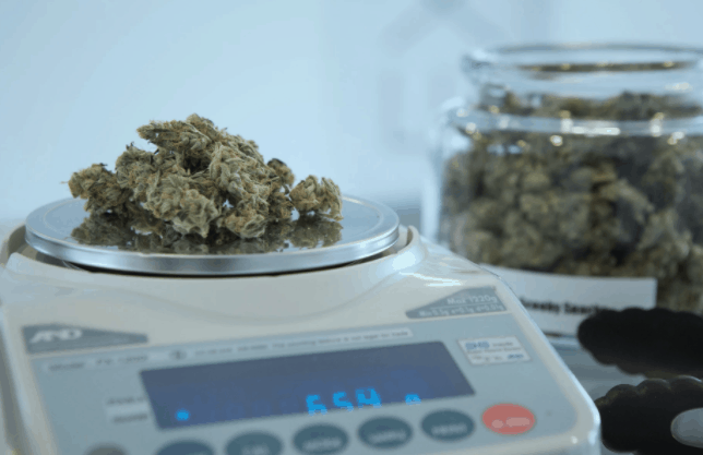 get your cannabis weighed when you visit a medical marijuana dispensary