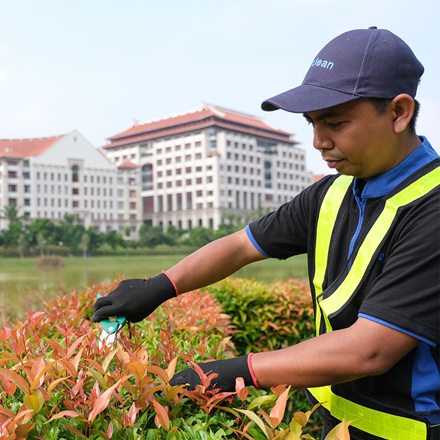 Landscape Maintenance Services