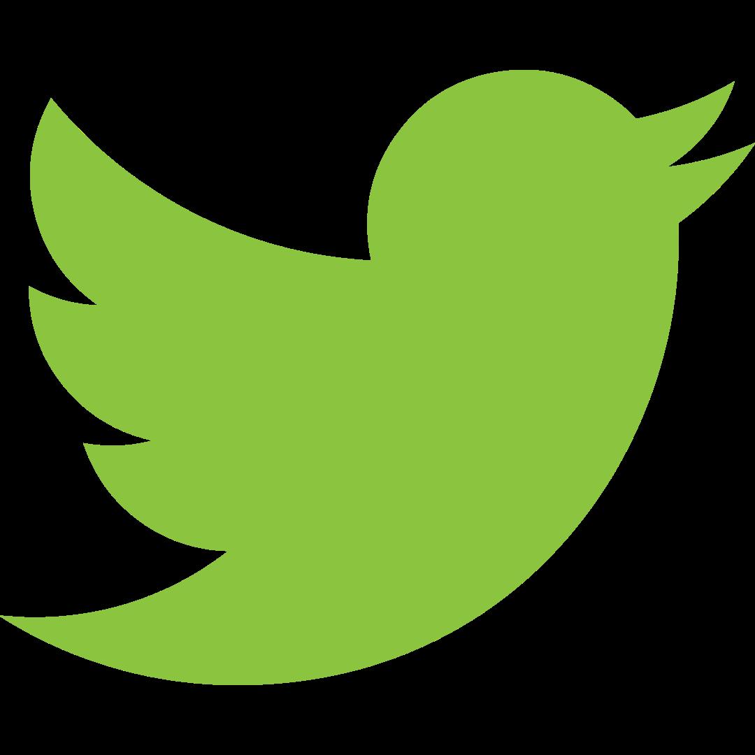 twitter KIDS icone