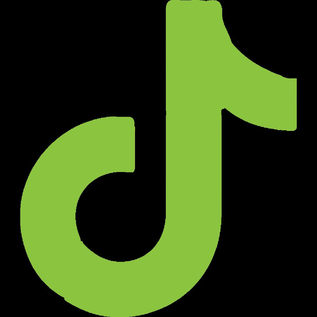 tiktok icone