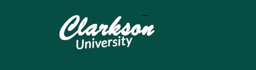 Clarkson University Pennant
