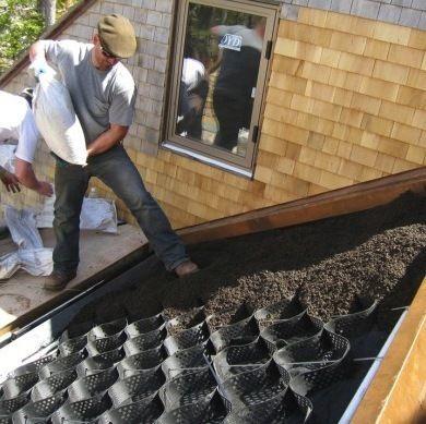 réalisation toiture végétale