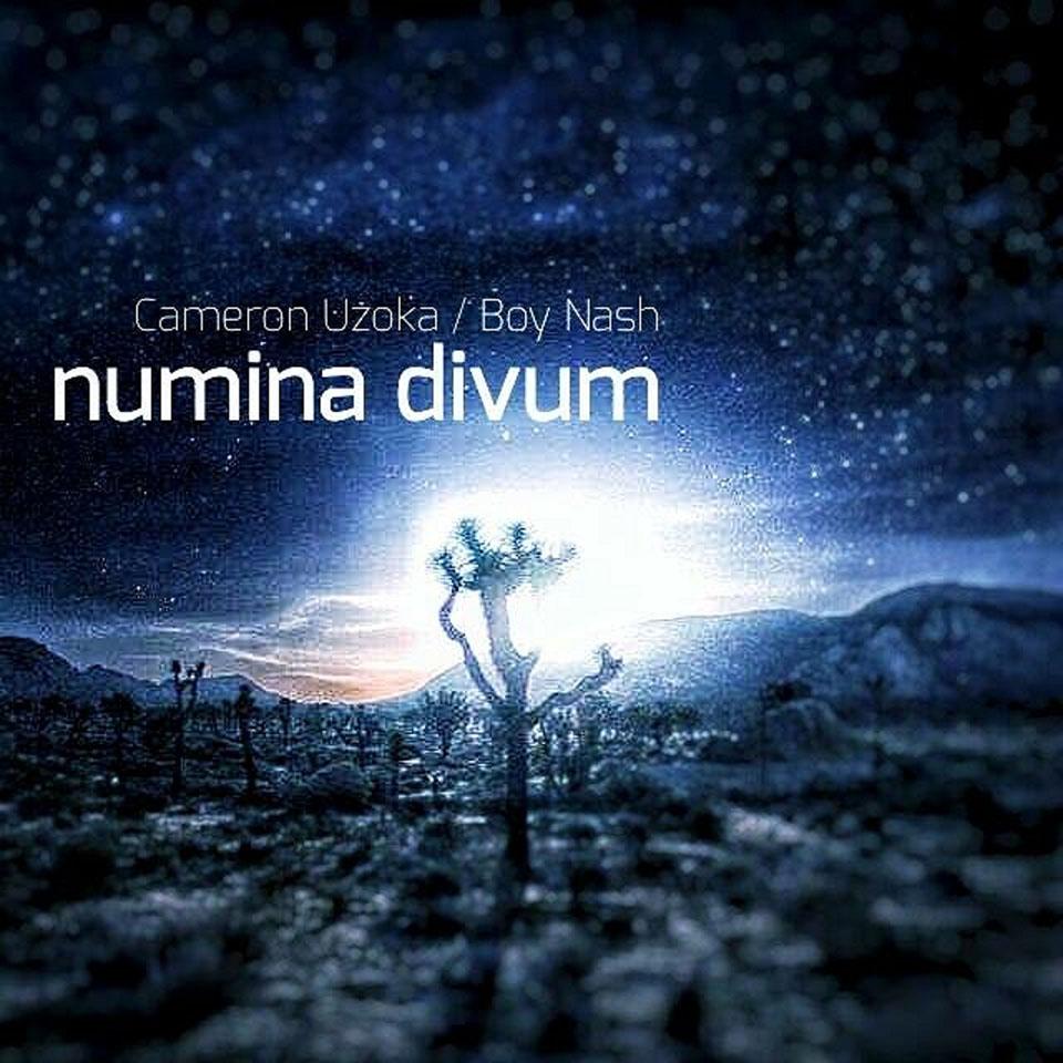 Boy Nash Numina Divum Album Cover