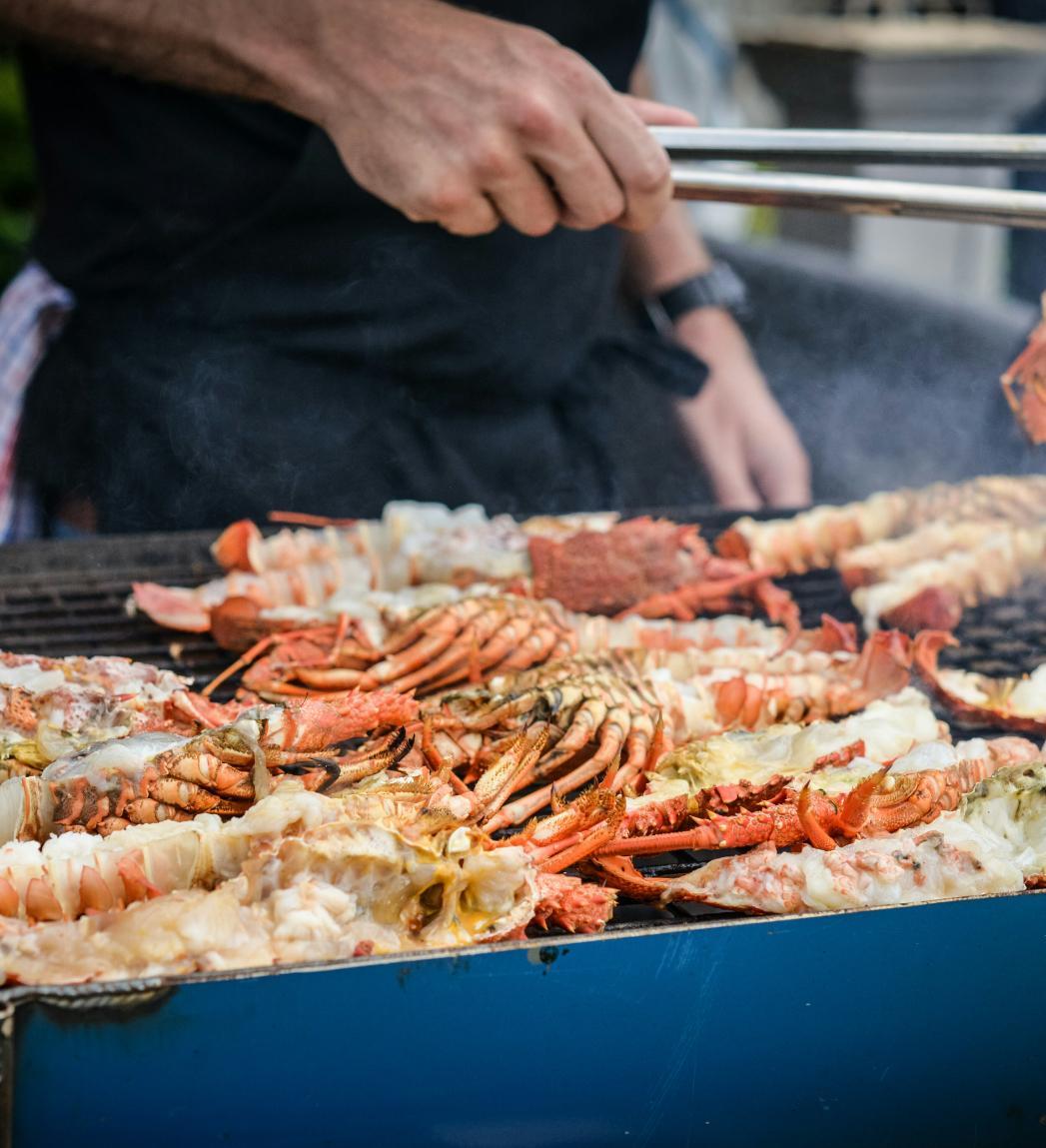 Dining Spots in Auckland CBD