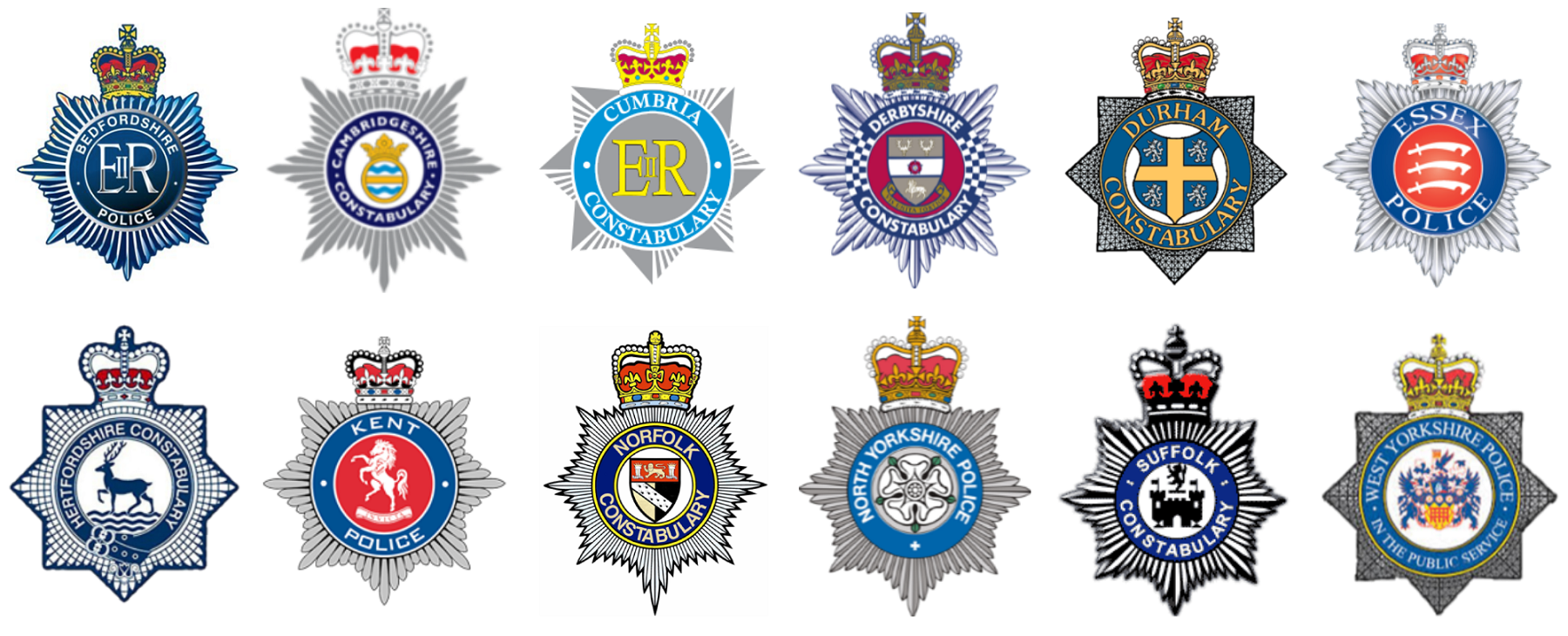 Picture of all 12 forces' logos