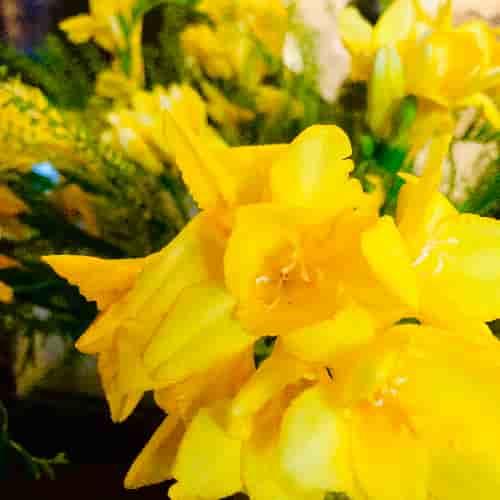 Réaliser des bouquets de fleurs pour l'accueil du Restaurant est un réel plaisir !