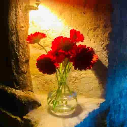 Bouquet de fleurs au Coupe-Chou.