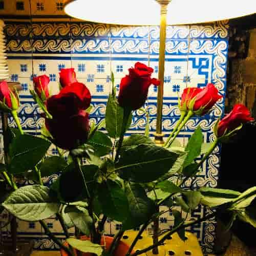 Bouquet de rose rouge sur fond de magnifiques carreaux parisiens bleus du début du XIXe siècle.
