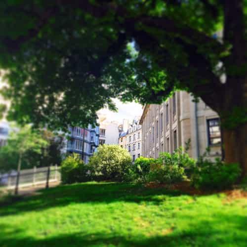 Depuis la rue des écoles, nous pouvons apercevoir le Restaurant le Coupe-Chou. A gauche du Collège de France.