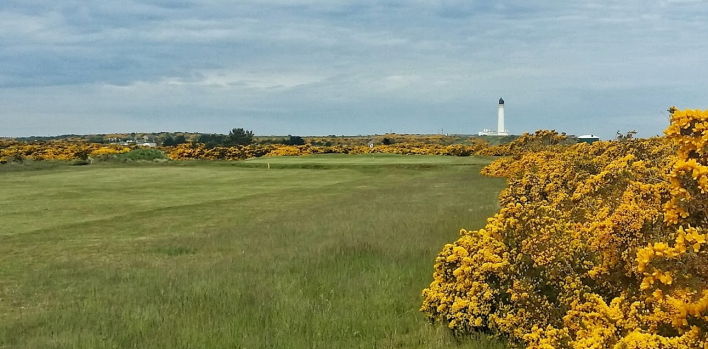 Moray Golf Club (New)