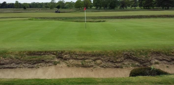 Walton Heath Golf Club (New)