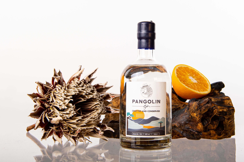 dooka_pangolin-gin_photoshoot-image-2