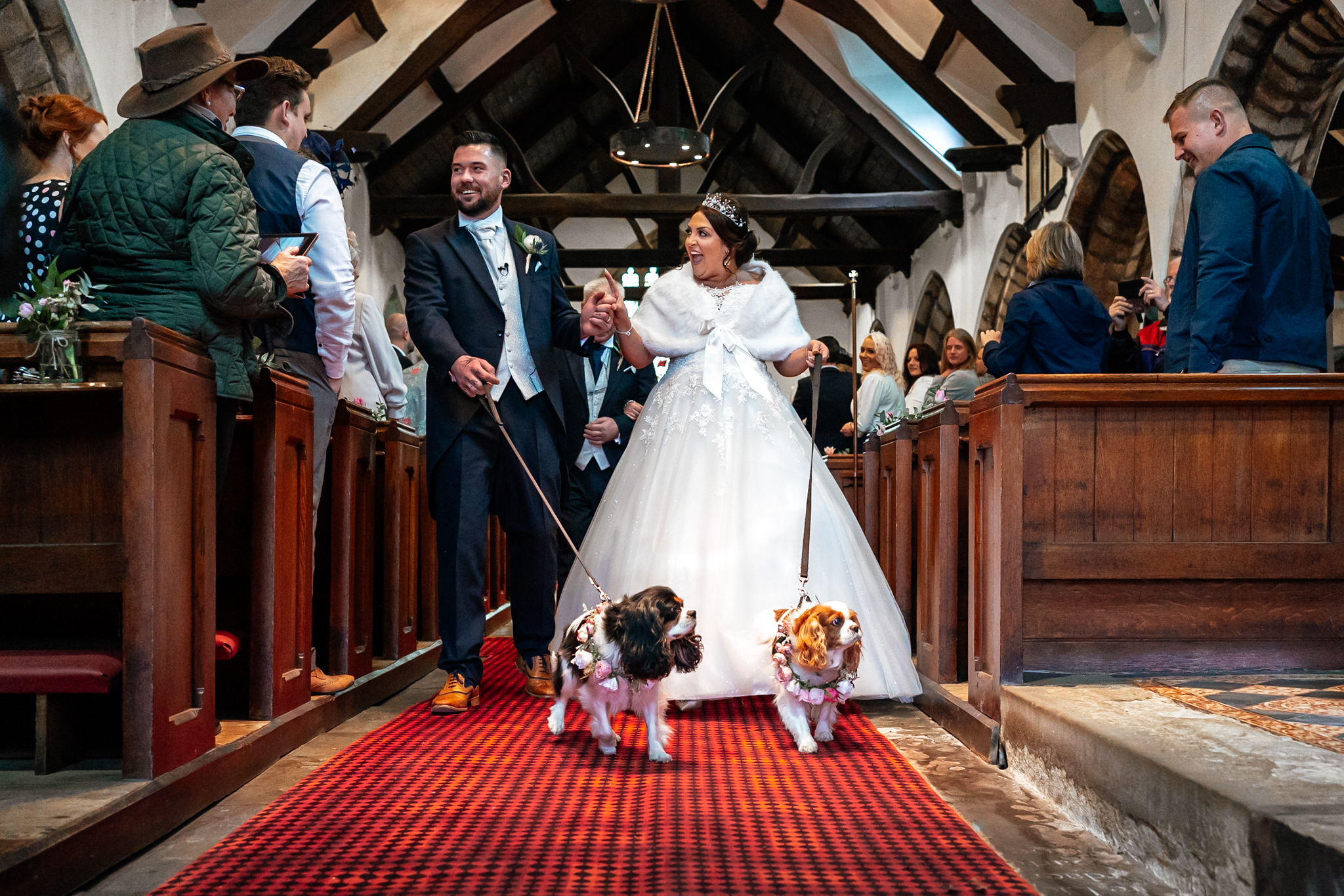Dogs At Weddings Lancashire