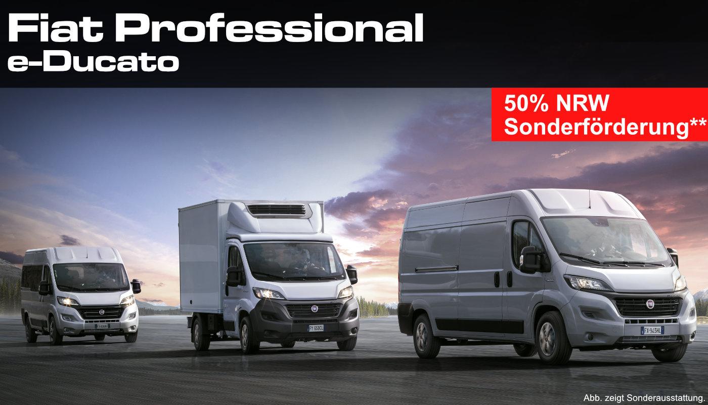 Fiat Professional Angebot