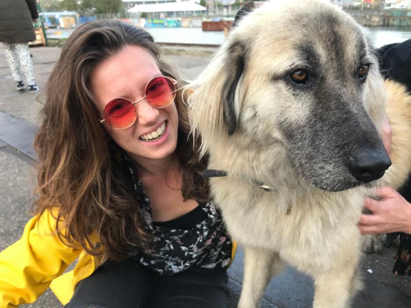 Dit ben ik met een super lieve hond die ik ontmoete op een festival.