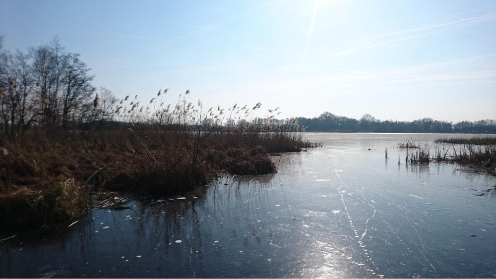 Foto van natuurijs op de Belterwiede.